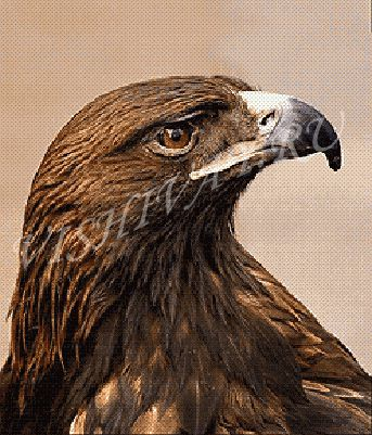 Орел ру медаль ветеран карельского фронта
