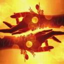 Солнечные руки