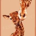 Жирафик с мамой