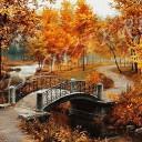 В желтом парке