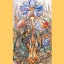 Дивный цветок_А