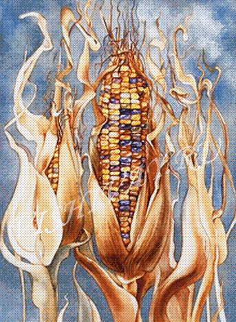 Дивная кукуруза